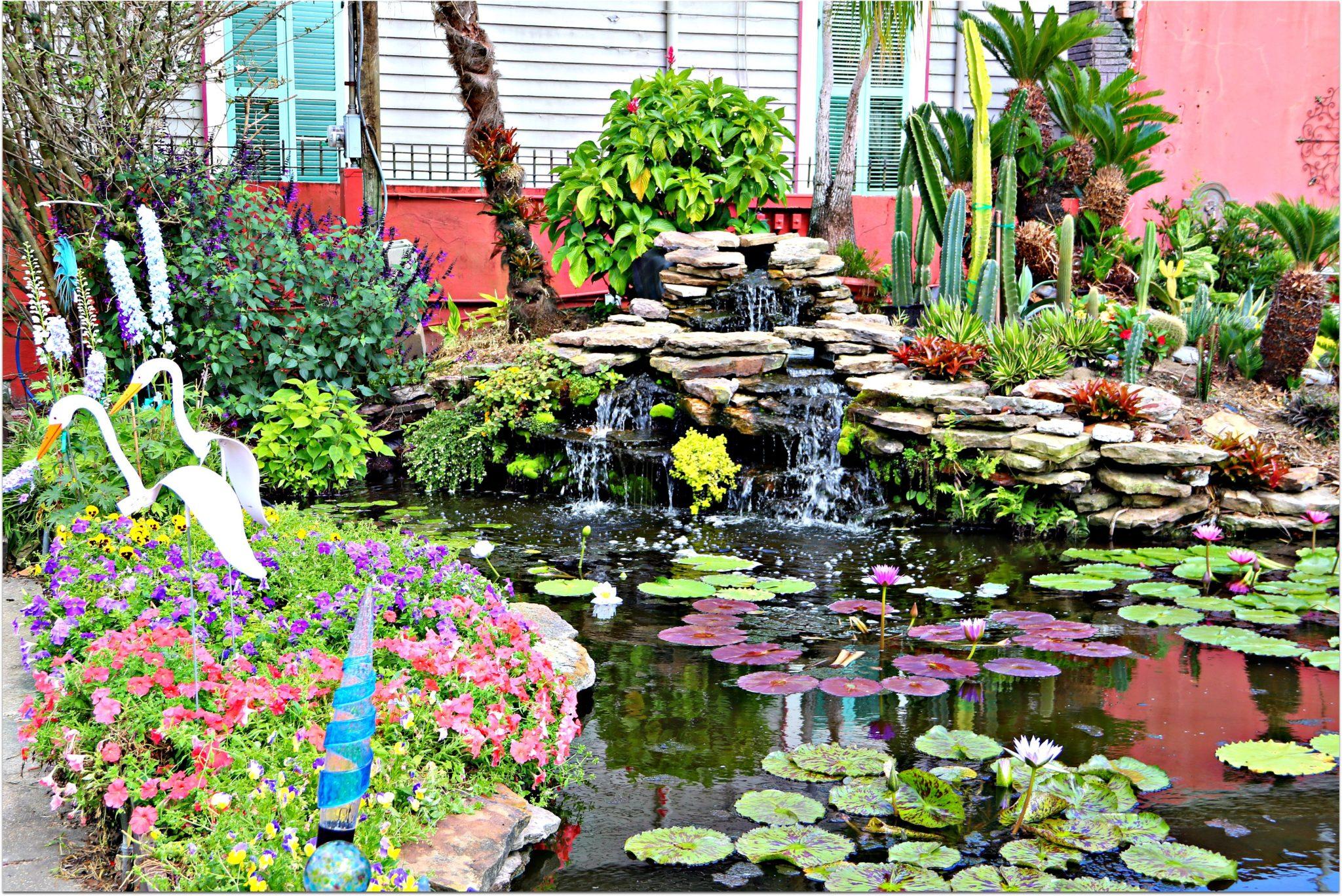 Aquatic Gardens Falls And Pond New Orleans French Quarter Condos